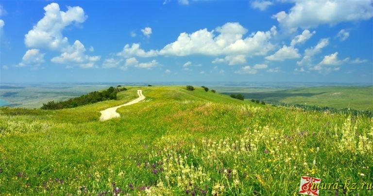 Стихотворения на казахском языке про лето