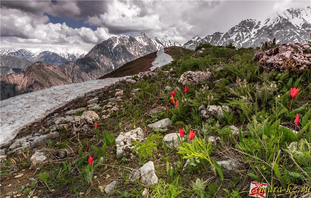 Стихотворения о весне на казахском языке