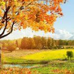 Күз туралы өлеңдер — Стихи про осень на казахском языке